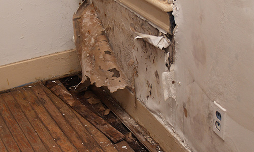 Damaged Dry Wall and Floor, Remediation, Belton, TX